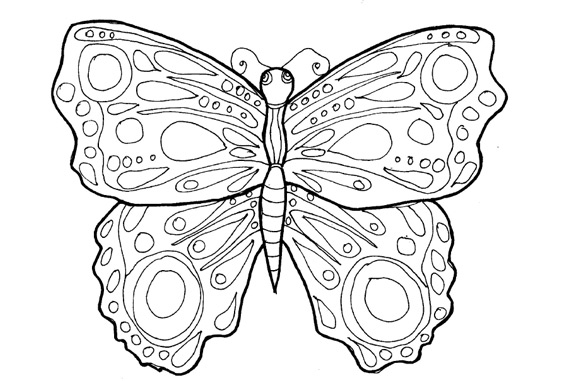Butterfly Drawing!